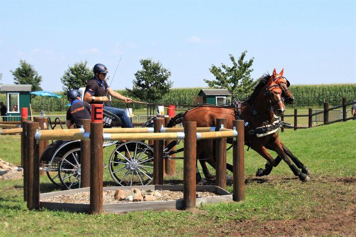 Raymond Letteboer in actie met zijn paarden Guus GS en Viandor.
