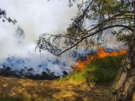 Brandweer is alert op natuurbranden op de Veluwe nu er een hittegolf aankomt
