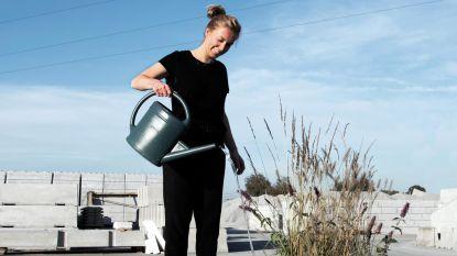 The Waterbench houdt regenwater vast