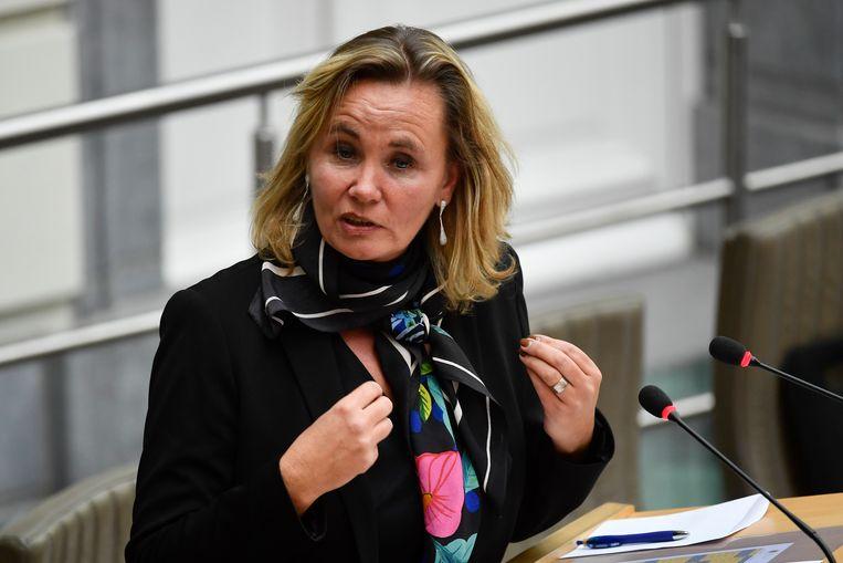 Vlaams minister van Inburgering Liesbeth Homans (N-VA). Beeld BELGA