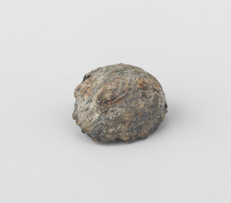 Waar het allemaal om begon: nootmuskaat. Deze is afkomstig uit het wrak van de Oost-Indiëvaarder 't Vliegend Hart, 1700 - 1735. Beeld Het Rijksmuseum