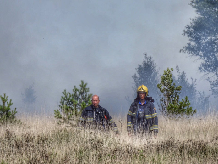 Grote brand in natuurgebied De Malpie in Valkenswaard