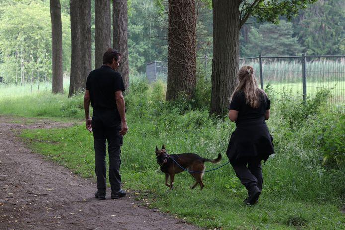 Er wordt zaterdagochtend opnieuw gezocht naar de vermiste Jan van de Wal uit Best.