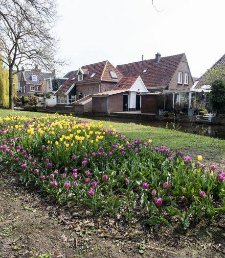 Monument staat in bloei: 1925 bostulpen herinneren aan de wederopbouw van Borculo