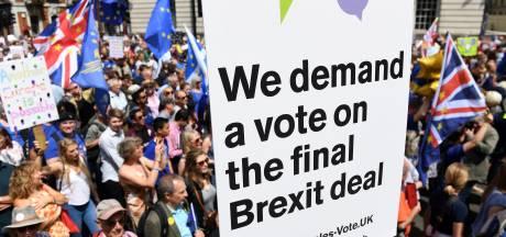 Britten eisen nieuw referendum over Brexit