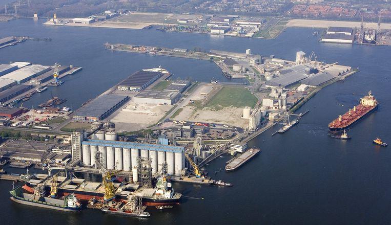 Het Amsterdamse havengebied. Beeld anp