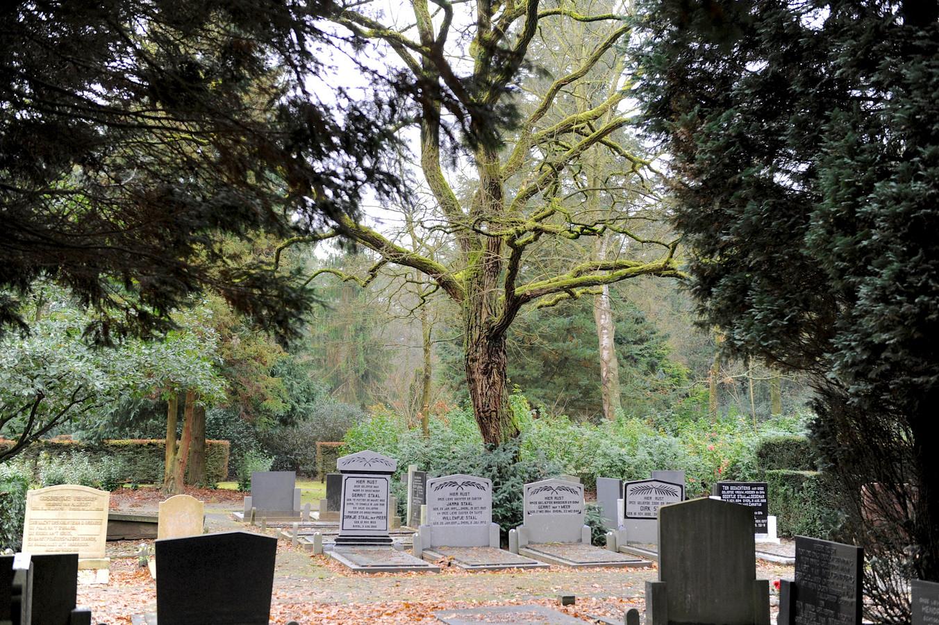 Op begraafplaats Koningsvaren in Ermelo kan je nu makkelijker het graf van je verwanten vinden, via zoekservice grafzoeken.nl.