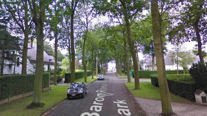 Stad kapt 143 bomen in slechte conditie en vervangt ze door gezonde exemplaren