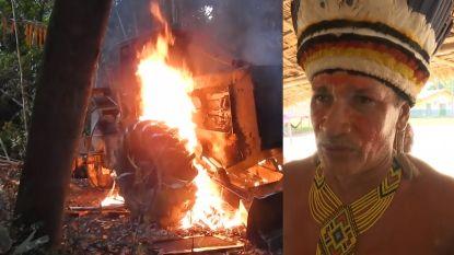 Amazonestam neemt zelf de wapens op tegen woudkappers