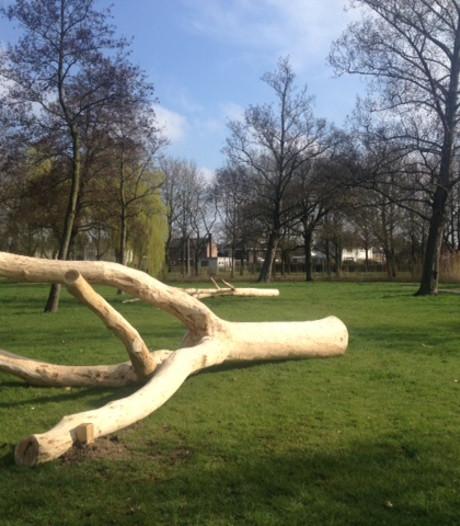 Gemeente zorgt voor speelbomen in het  Zuiderpark in Den Bosch