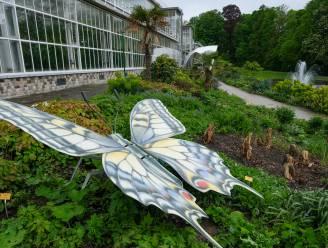 Knappe tentoonstelling van Marijke Meersman in Plantentuin is zeker bezoekje waard