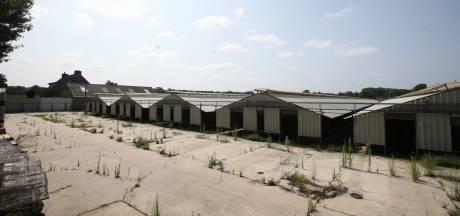 Plan voor woningen 240 arbeidsmigranten op plek nertsenfarm in Vlierden