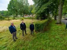 Oisterwijk verzilvert zijn weitje aan de Merodelaan, maar de buurt steigert: donderdag in de raad