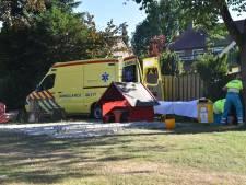 Vrouw raakt gewond bij val van ladder tijdens kersen plukken in Malden