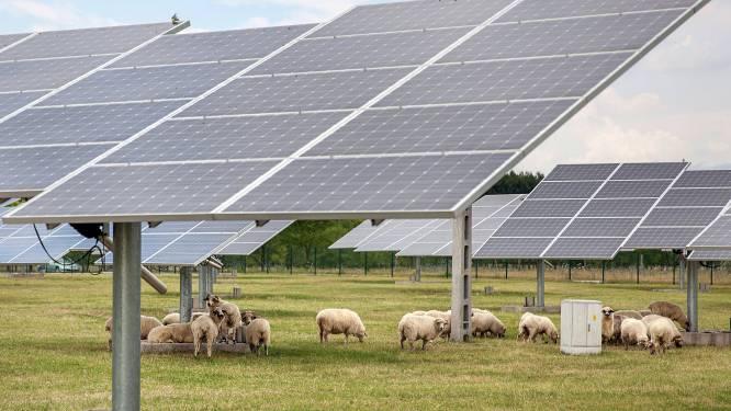 Eersel wil geluidswal met zonnepanelen: Kempen niet op één lijn in energiebeleid