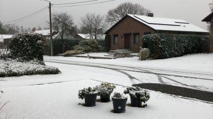 Koning Winter op bezoek: delen van Limburg en Oost-Brabant bedekt met mooi laagje sneeuw