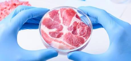 La viande in vitro, Frankensteak ou salut de l'Humanité?