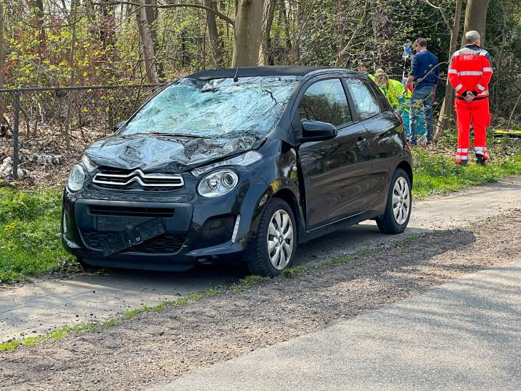 Wielrenner raakt ernstig gewond als hij op voorruit van auto belandt in Milheeze