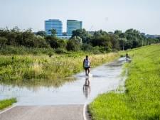 Hoogwater met mooi weer is in de regio Arnhem een dagje uit