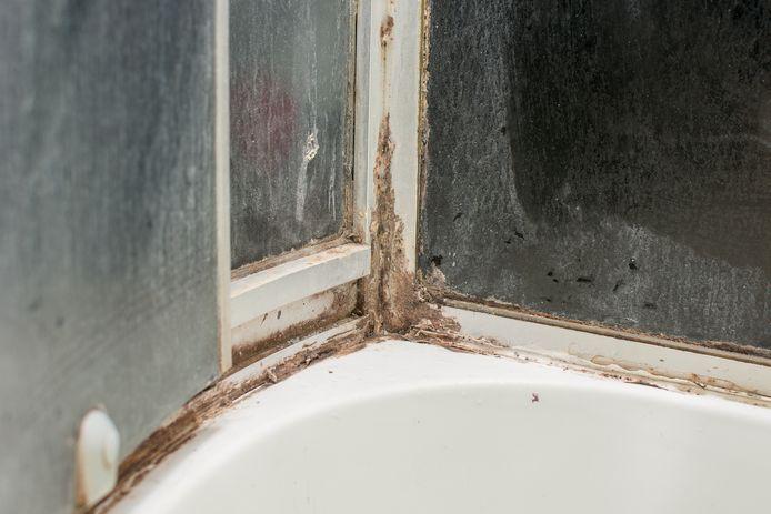 Ook de kitranden in de douche zijn lastig schoon te houden, weet Marja Middeldorp uit ervaring.