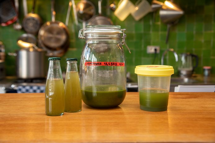 Bij Atelier M experimenteren ze met komkommerextracten in drankjes.