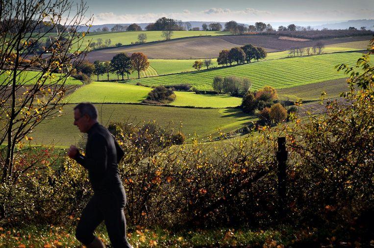 Het Zuid-Limburgs heuvellandschap bij Vrakelberg. Beeld Marcel van den Bergh