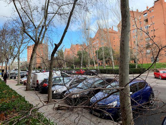 Afgerukte takken op auto's in Madrid, waar een Zuid-Koreaanse vrouw omkwam.
