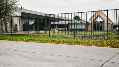 Zeels vleesverwerkingsbedrijf zet samenwerking met Duits slachthuis stop na gruwelijke beelden