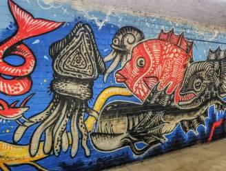 Academie biedt als eerste in West-Vlaanderen opleiding Street Art aan en showt onderwaterwereld in catacomben Magdalenazwembad