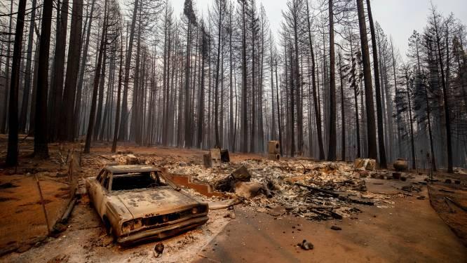 """Medische tijdschriften van over de hele wereld roepen wereldleiders op klimaatverandering serieuzer te nemen: """"Catastrofale gevolgen voor gezondheid"""""""