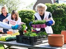 Beatrix ijverig met potten en planten voor NLdoet: 'Fijn dat ik weer mocht werken'