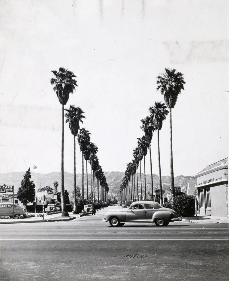 Los Angeles in de jaren 50. Beeld Getty Images