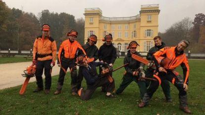 Kasteeldomein d'Ursel krijgt hulp van leerlingen tuinonderhoud én van bosbouwer uit Estland