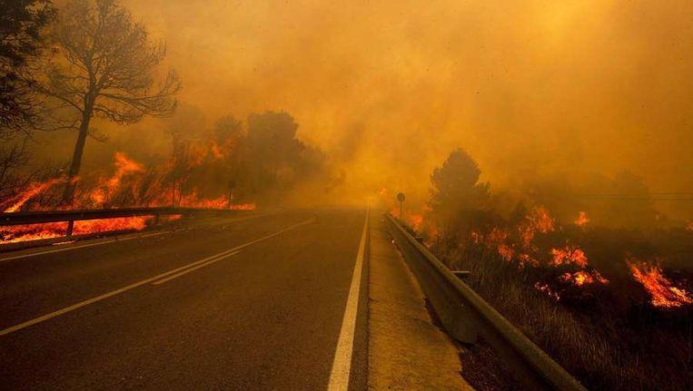 Vlammen rond een weg in Yátova, bij Valencia. Beeld afp