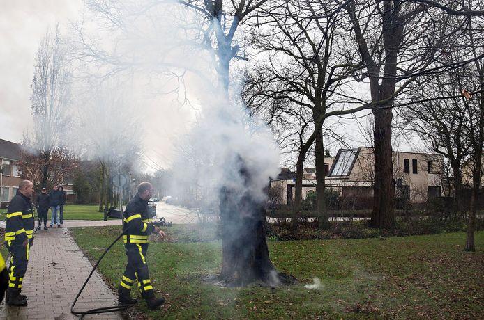 Boom vloog in Etten-Leur door vuurwerk in brand.Foto  Alexander Vingerhoeds