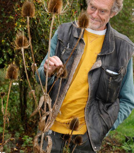 Rob (71) uit Borculo is fan van de wilde planten in Nijmegen: 'Gevoel dat je zo de natuur instapt'