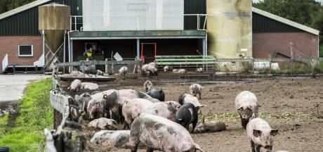 Landbouwsector zwaar onder druk: de boeren hebben het gedaan