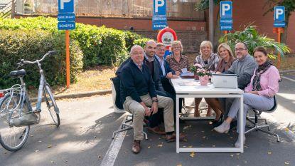 15 parkeerplaatsen in Sint-Truiden ingepalmd op 'Park(ing)Day'