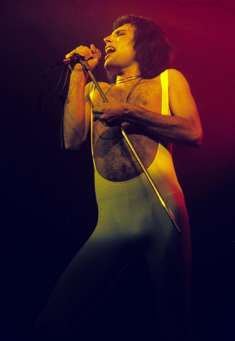 Freddie Mercury van Queen. Beeld Anwar Hussein Collection
