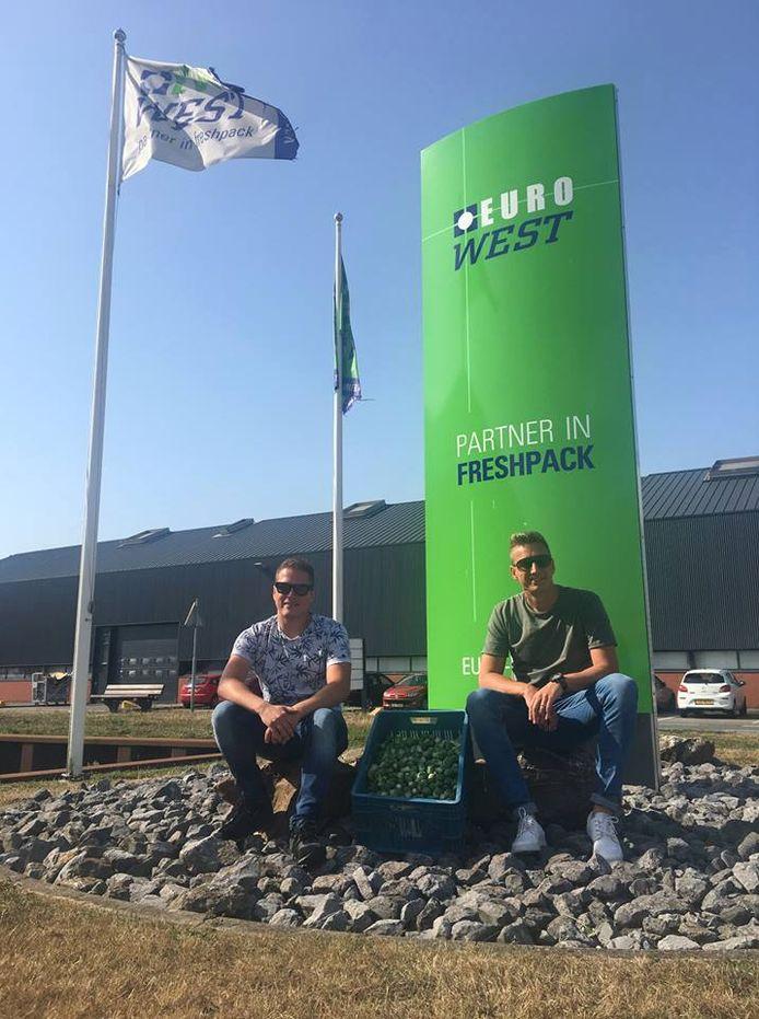 Remco Boelens (rechts) en Thijs 't Hoen van Euro West uit Poeldijk met de eerste kist Hollandse spruitjes