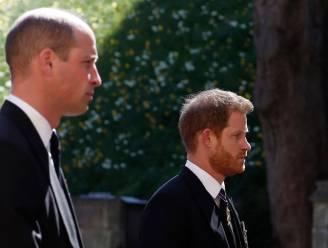 """Vriend van Harry schept duidelijkheid: """"Hij maakt al anderhalf jaar ruzie met William en er is geen beterschap in zicht"""""""