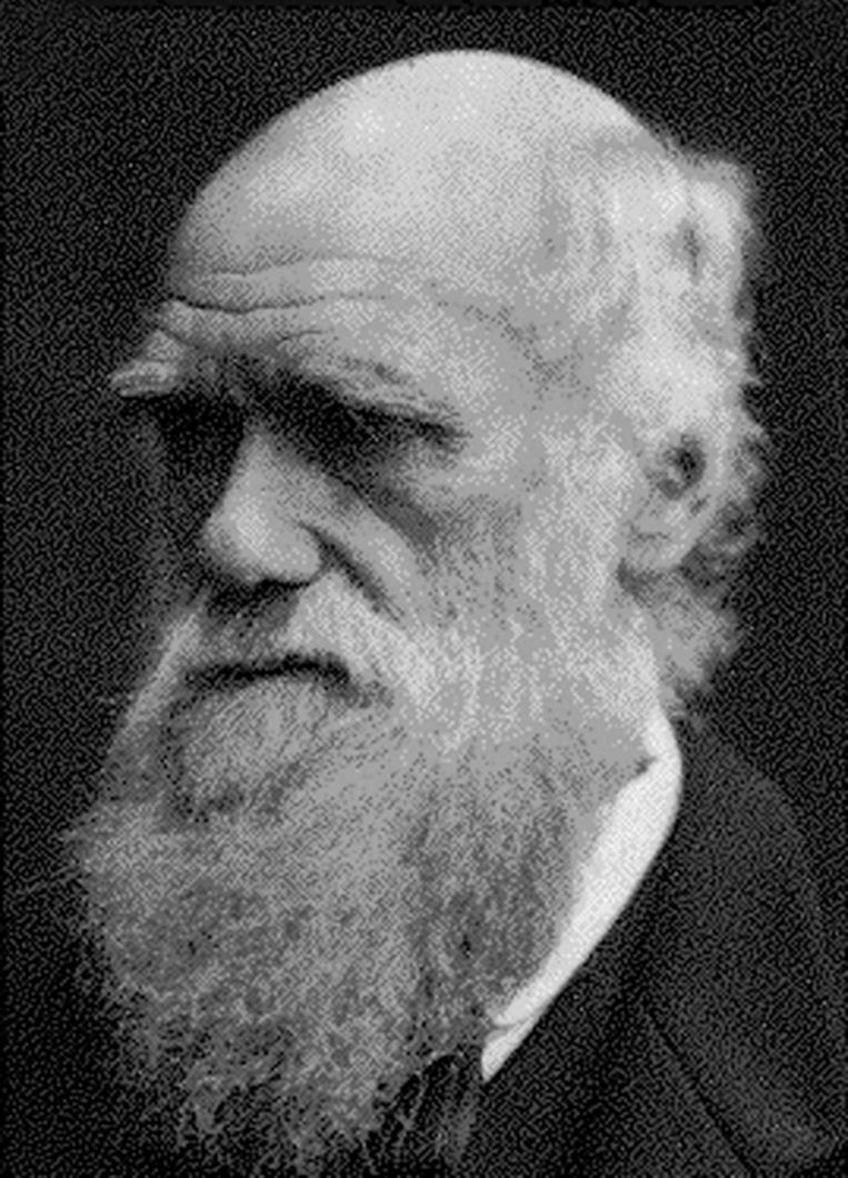 Geen vrolijke selfies voor Charles Darwin. Beeld null