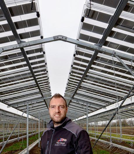 Fruitteler Maarten (36) vreest voor zonneweides: 'Wég waardevolle landbouwgrond'