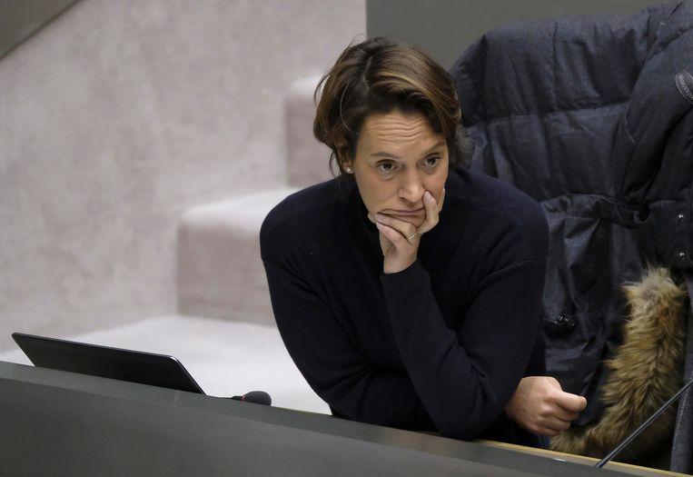 Ook Elisabeth Meuleman (Groen) vraagt dat Luc Van den Brande zijn beslissing komt toelichten. 'Zeker nu blijkt dat hij in de hele procedure cruciale zaken zou hebben achtergehouden.' Beeld BELGA