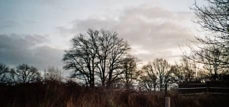 Rockmuzikant maakt alternatieve variant op Gemerts volkslied: 'Where I'm from'