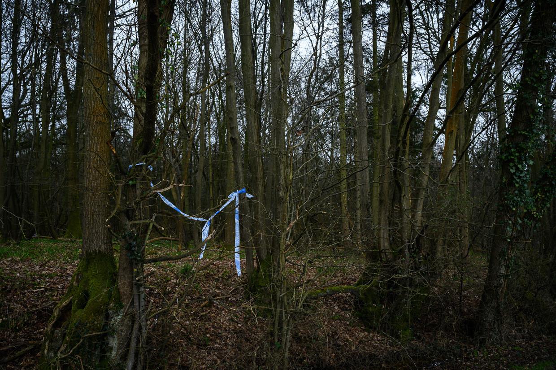 Onderzoek van de politie in de bossen in Ashford. Beeld Getty Images