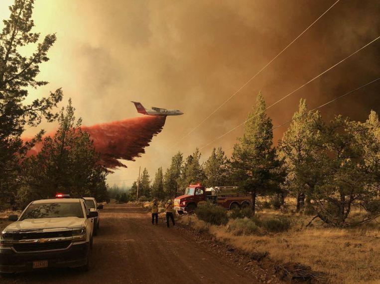 Een blusvliegtuig dropt chemicaliën die de brand moeten doven.  Beeld AFP