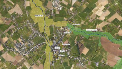 """Aerebeekvallei in Herne wordt Klimaatvallei: """"Dit Paradijsplekje kan een voorbeeld voor het hele Pajottenland worden"""""""