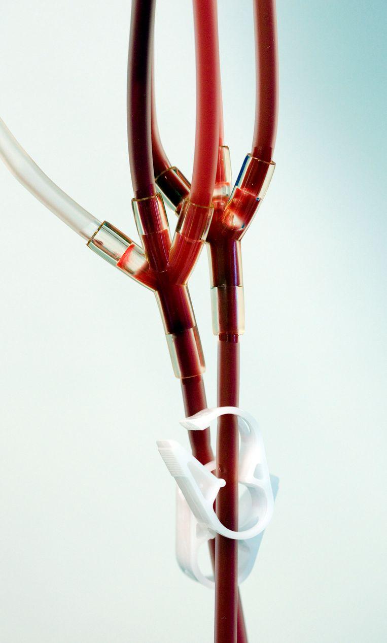 Al decennia worden mannen die seks hebben met mannen uitgesloten van bloeddonatie. Beeld Hollandse Hoogte /  ANP XTRA