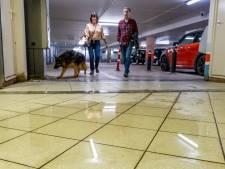 Nat, vies en onveilig: 'Parkeergarage Geere is schandalig verwaarloosd'